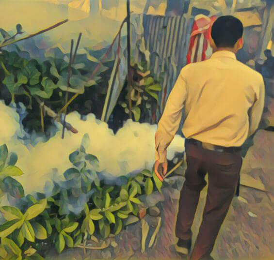 Pest Control Mumbai
